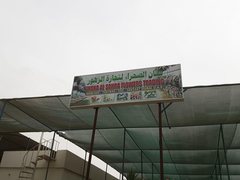 HiDubai-business-jinan-al-sahara-plants-trading-home-gardening-landscaping-warsan-3-dubai