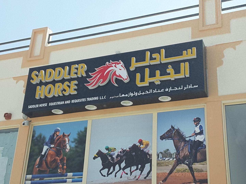HiDubai-business-saddler-horse-equestrian-and-requisites-trading-b2b-services-distributors-wholesalers-al-aweer-2-dubai-2