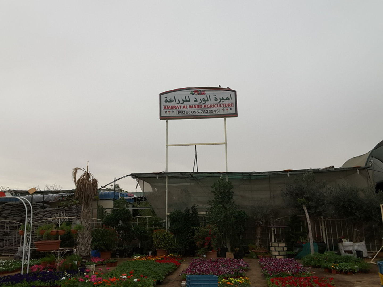 HiDubai-business-amerat-al-ward-agriculture-home-gardening-landscaping-warsan-3-dubai-2