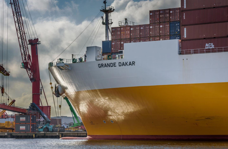 HiDubai-business-apex-global-shipping-logistics-shipping-logistics-sea-cargo-services-naif-dubai-2
