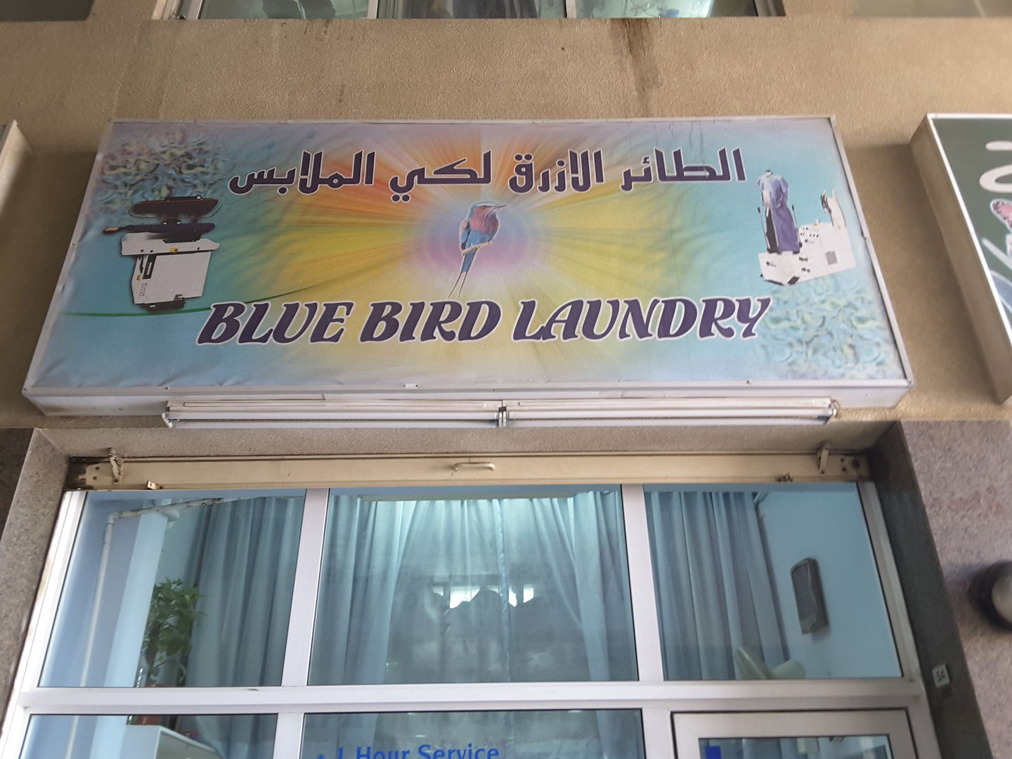 HiDubai-business-blue-bird-laundry-home-laundry-al-satwa-dubai-2