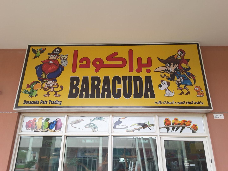 HiDubai-business-baracuda-pets-trading-animals-pets-plants-animal-breeding-centres-warsan-3-dubai-2