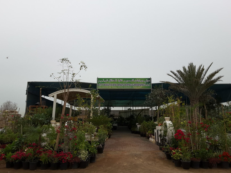 HiDubai-business-city-beautician-landscaping-gardening-home-gardening-landscaping-warsan-3-dubai-2