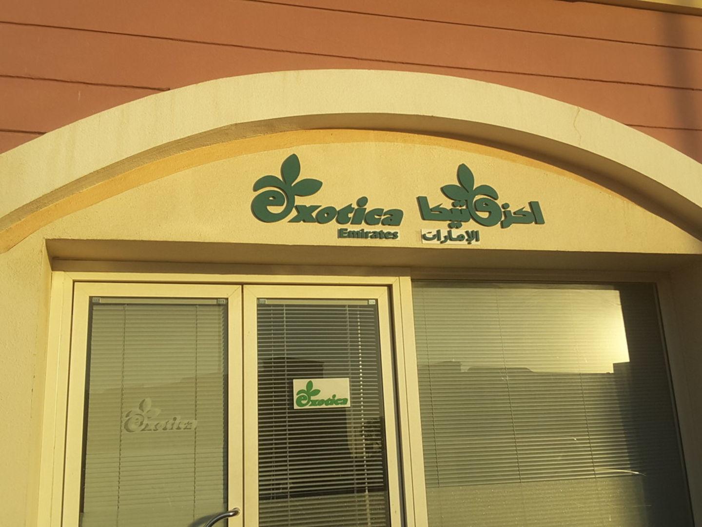 HiDubai-business-exotica-emirates-animals-pets-plants-plants-gardening-stores-international-city-warsan-1-dubai-2