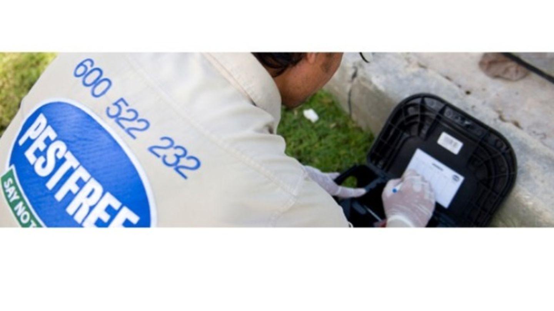 HiDubai-business-pest-free-home-pest-control-disinfection-services-dubai-investment-park-1-dubai