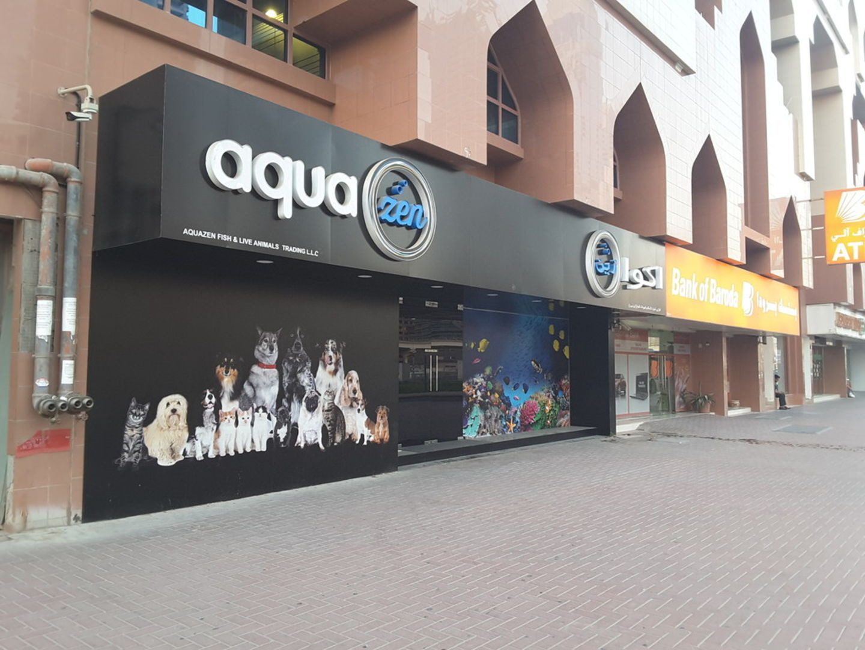 HiDubai-business-aquazen-fish-and-live-animals-trading-animals-pets-plants-animal-shelters-adoption-centres-al-wasl-dubai-2