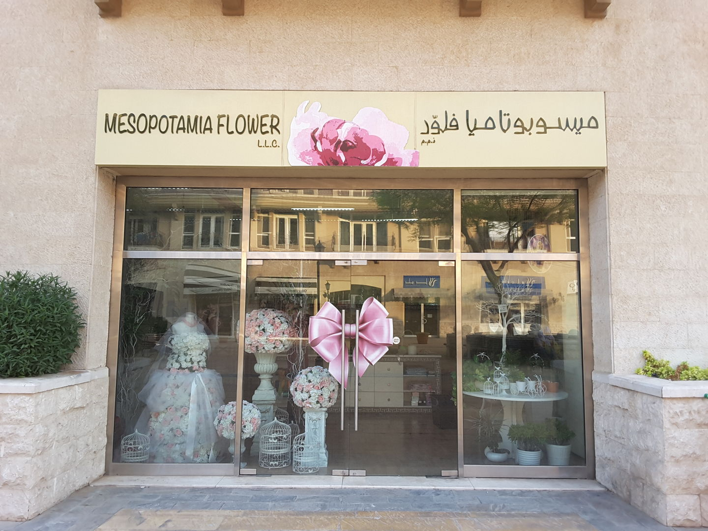 HiDubai-business-mesopotamia-flower-animals-pets-plants-plants-gardening-stores-mirdif-dubai-2