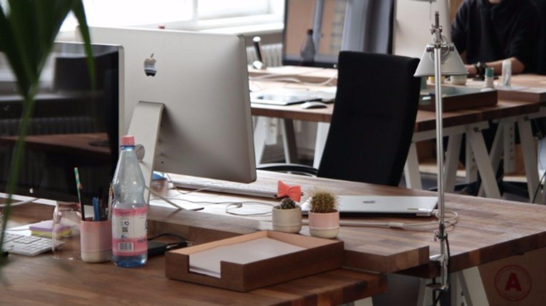 HiDubai-business-vashis-company-b2b-services-office-furniture-plants-decor-meena-bazar-al-souq-al-kabeer-dubai