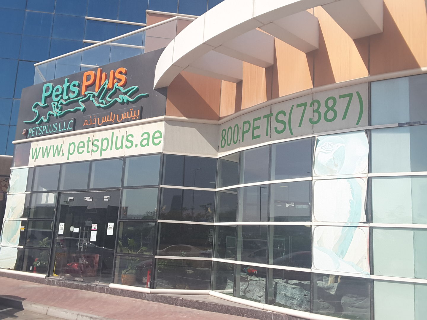 HiDubai-business-pets-plus-animals-pets-plants-pet-grooming-centres-al-safa-1-dubai-2