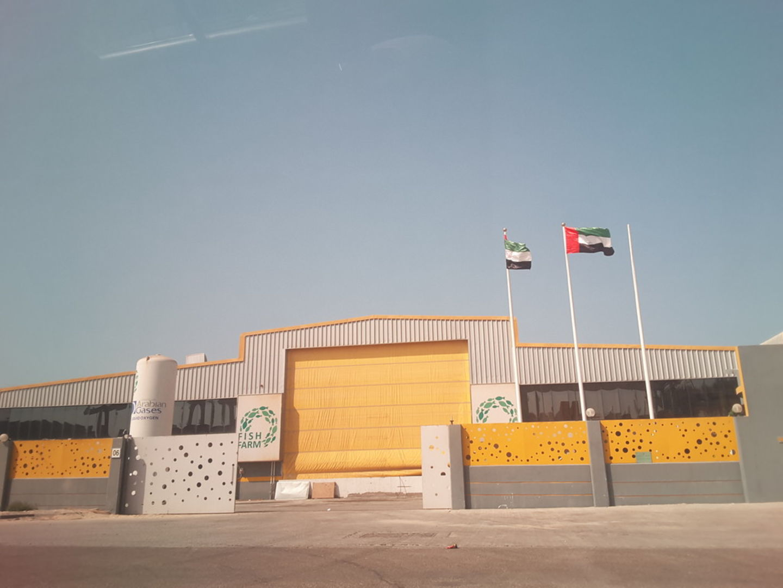 HiDubai-business-fish-farm-b2b-services-distributors-wholesalers-jebel-ali-free-zone-mena-jebel-ali-dubai-2