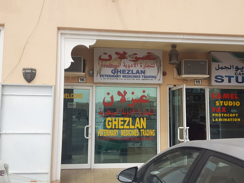 HiDubai-business-ghezlan-veterinary-medicines-trading-animals-pets-plants-pet-clinics-vets-margham-dubai-2