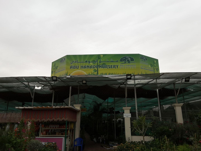 HiDubai-business-abu-hanadi-nursery-home-gardening-landscaping-warsan-3-dubai-2