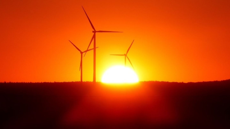 HiDubai-business-ecosol-energy-systems-trading-construction-heavy-industries-construction-renovation-ras-al-khor-industrial-2-dubai