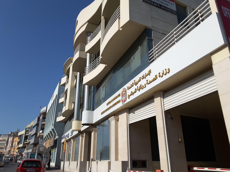 HiDubai-business-green-planet-landscape-home-gardening-landscaping-al-khabaisi-dubai