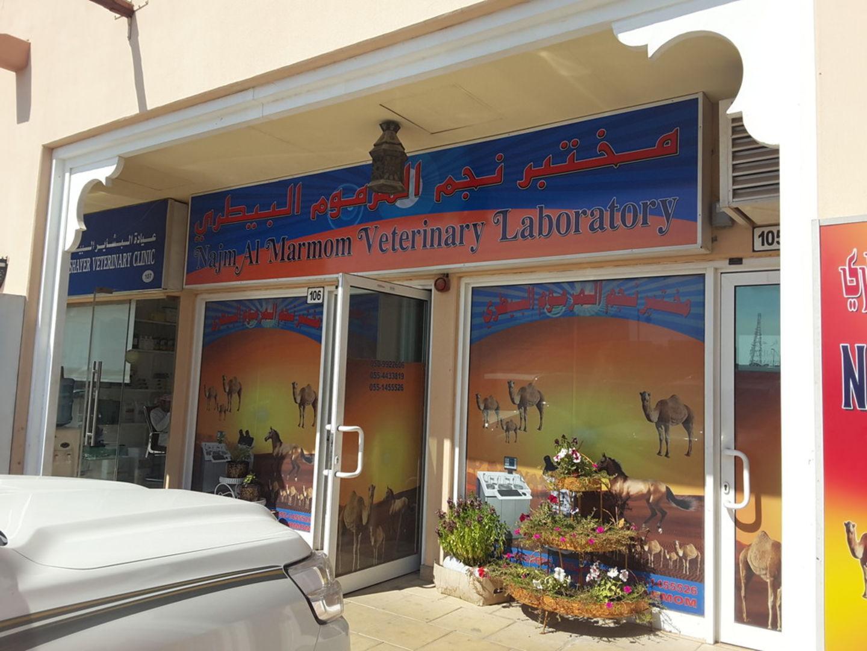 HiDubai-business-najm-al-marmom-veterinary-laboratory-animals-pets-plants-pet-clinics-vets-margham-dubai-2