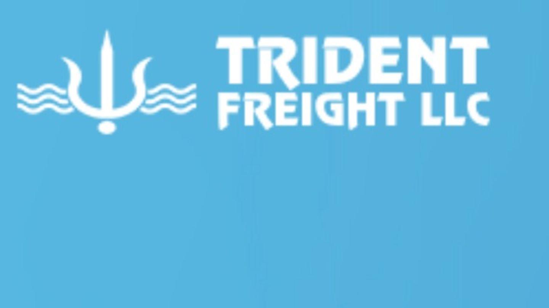 HiDubai-business-trident-freight-shipping-logistics-air-cargo-services-jebel-ali-free-zone-mena-jebel-ali-dubai
