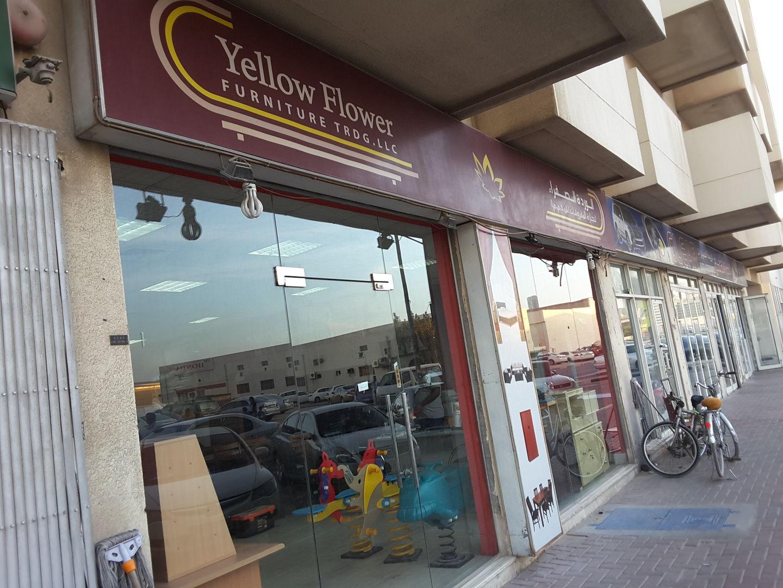 HiDubai-business-yellow-flower-furniture-trading-b2b-services-office-furniture-plants-decor-al-qusais-industrial-1-dubai-2