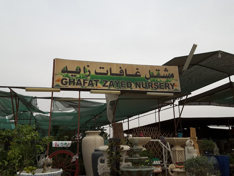 HiDubai-business-ghafat-zayed-nursery-home-gardening-landscaping-warsan-3-dubai-2