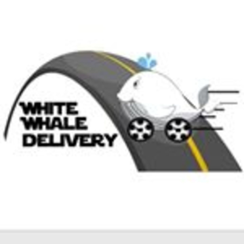HiDubai-business-white-whale-delivery-services-b2b-services-courier-delivery-services-international-city-warsan-1-dubai