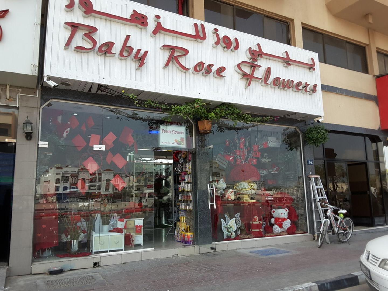 HiDubai-business-baby-rose-flowers-animals-pets-plants-plants-gardening-stores-al-muteena-dubai-4