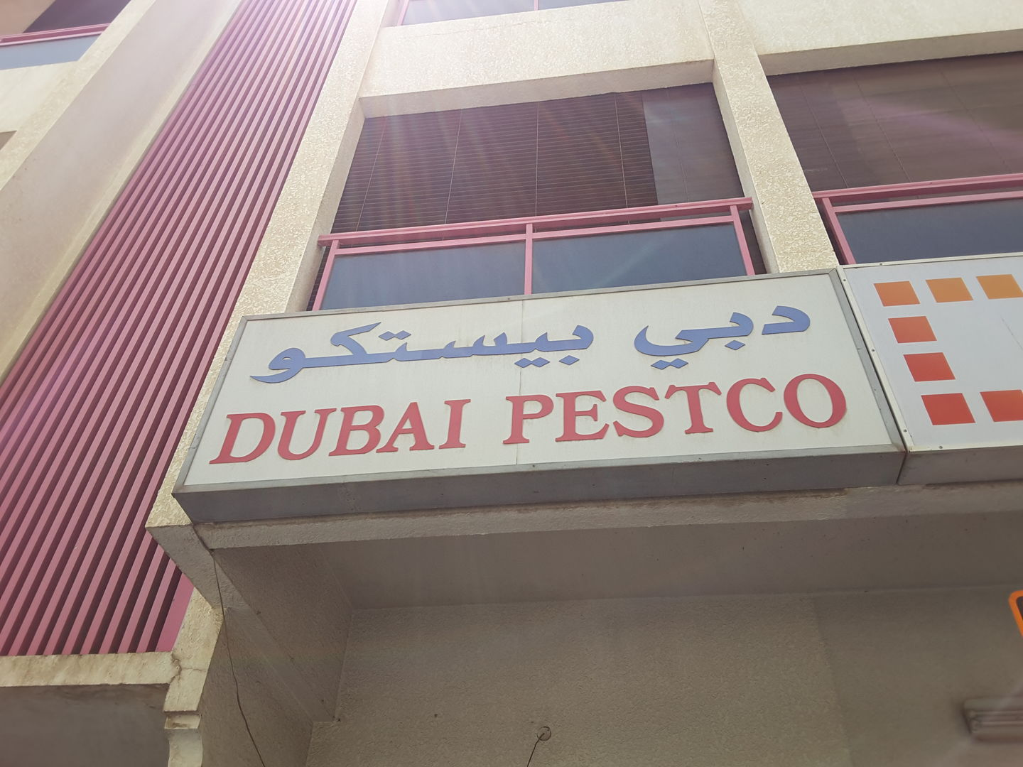 HiDubai-business-dubai-pestco-home-pest-control-disinfection-services-al-karama-dubai-2