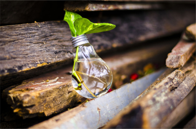 HiDubai-business-madenat-al-nokhba-recycling-services-construction-heavy-industries-waste-recycling-services-jebel-ali-industrial-1-dubai