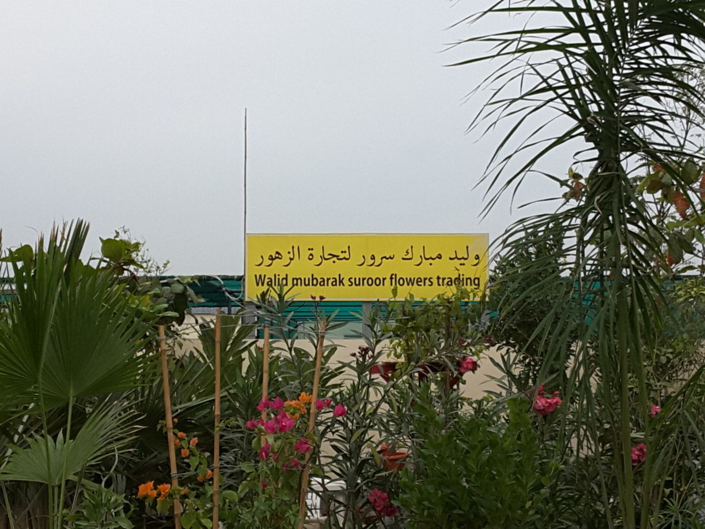 HiDubai-business-walid-mubarak-suroor-flowers-trading-home-gardening-landscaping-warsan-3-dubai-2