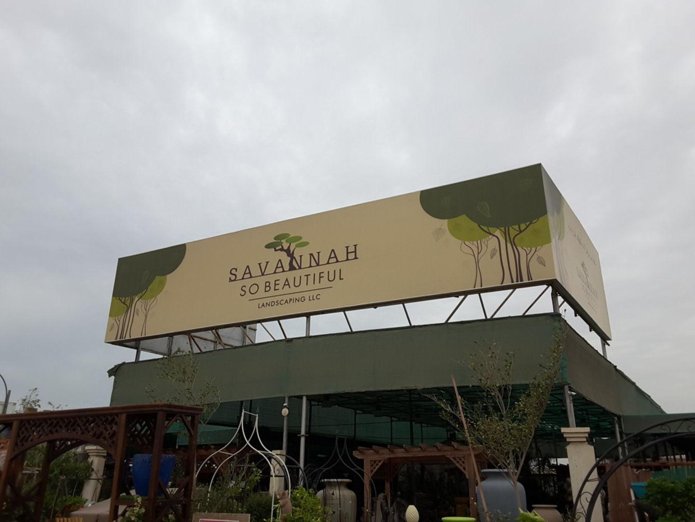HiDubai-business-savannah-so-beautiful-landscaping-home-gardening-landscaping-warsan-3-dubai-2
