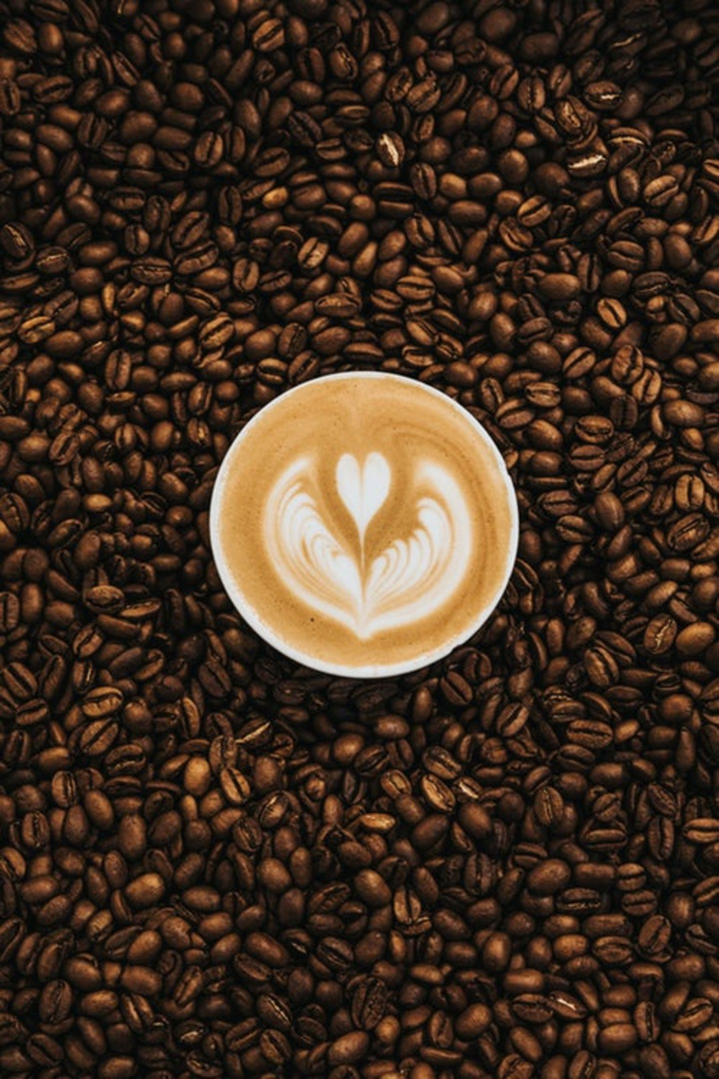 HiDubai-business-exit-coffee-shop-food-beverage-coffee-shops-dubai-motor-city-al-hebiah-1-dubai