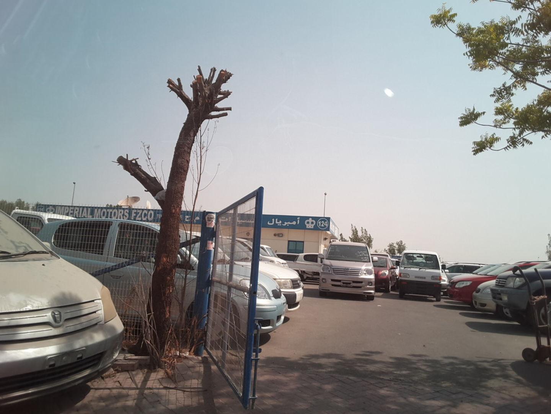 HiDubai-business-imperial-motors-transport-vehicle-services-used-car-dealers-ras-al-khor-industrial-3-dubai-2