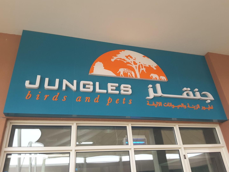 HiDubai-business-jungles-birds-and-pets-animals-pets-plants-animal-breeding-centres-warsan-3-dubai-2