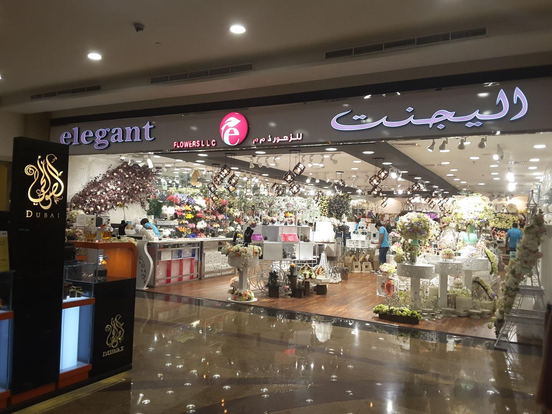 HiDubai-business-elegant-flowers-animals-pets-plants-plants-gardening-stores-mirdif-dubai-2