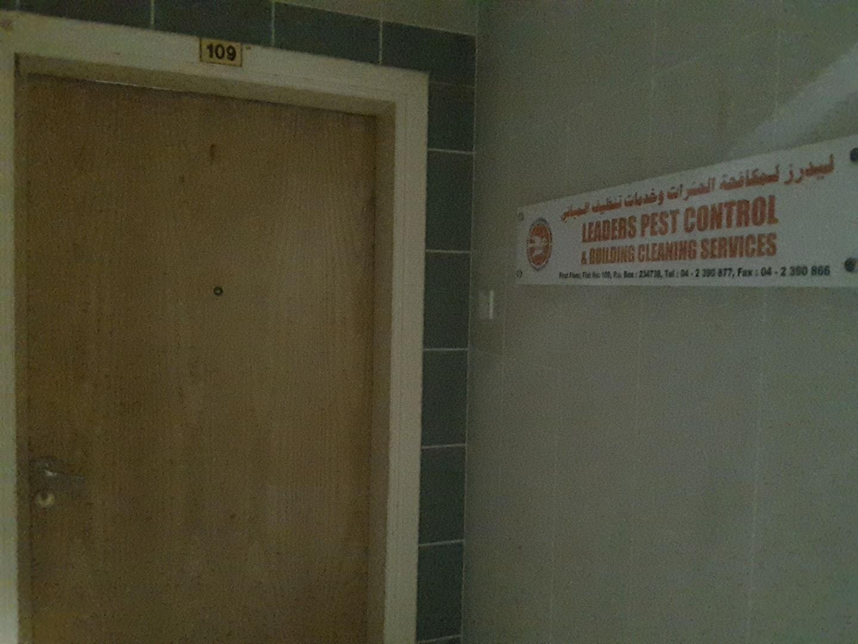 HiDubai-business-leaders-pest-control-building-cleaning-services-home-pest-control-disinfection-services-al-qusais-industrial-4-dubai-2