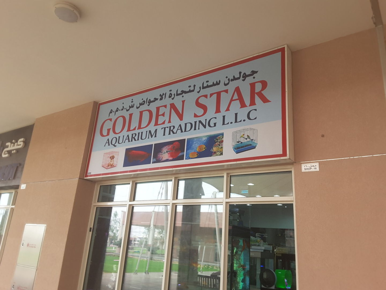 HiDubai-business-golden-star-aquarium-trading-animals-pets-plants-animal-breeding-centres-warsan-3-dubai-2