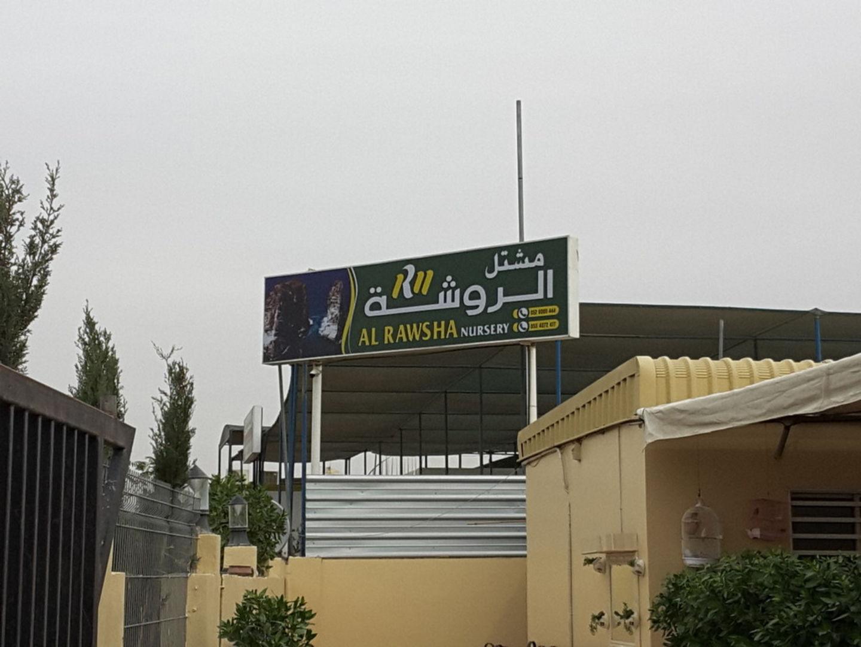 HiDubai-business-al-rawsha-nursery-home-gardening-landscaping-warsan-3-dubai-2