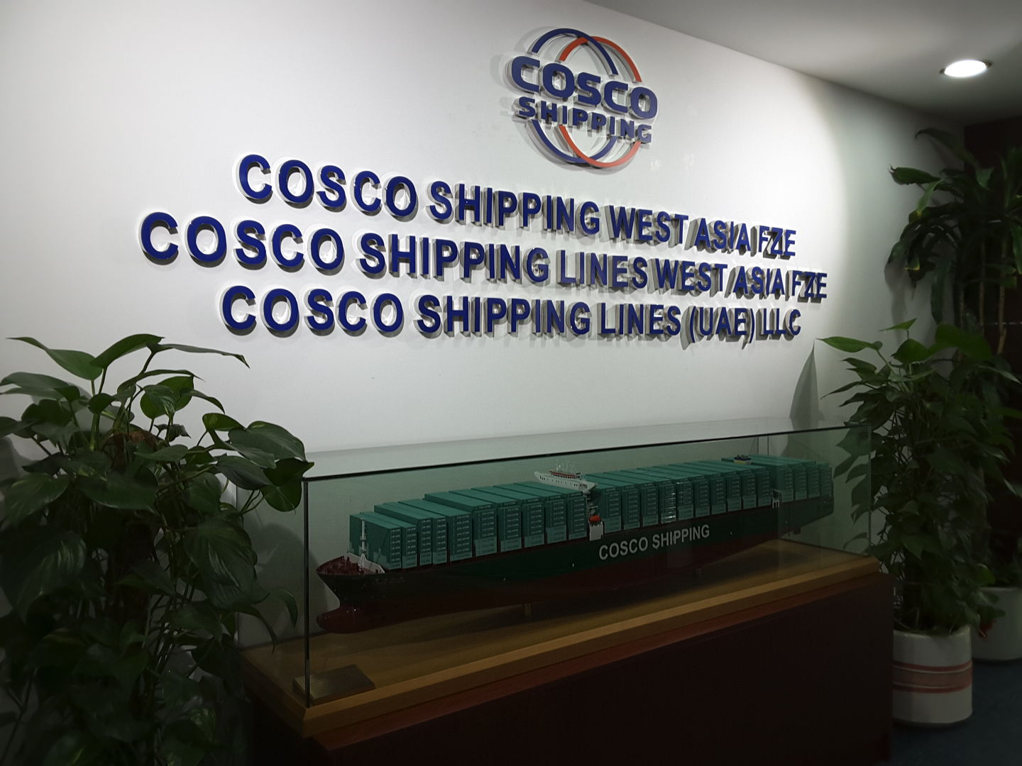 HiDubai-business-china-shipping-u-a-e-agency-shipping-logistics-sea-cargo-services-business-bay-dubai-2