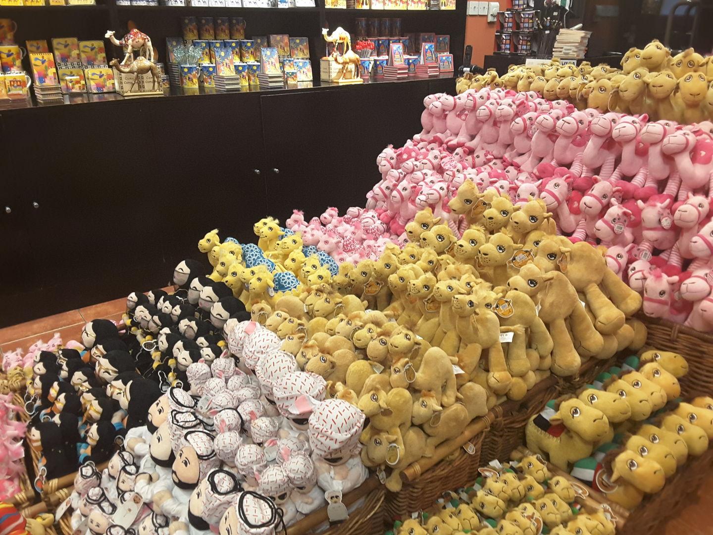 HiDubai-business-camel-company-hotels-tourism-souvenirs-gifts-jumeirah-3-dubai-2