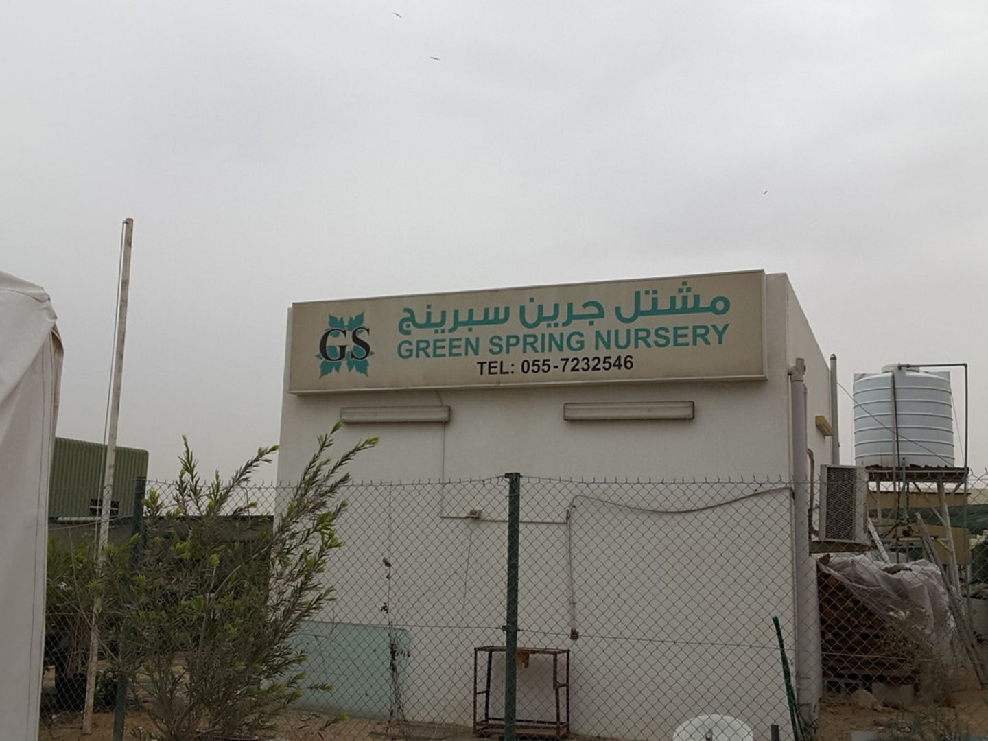HiDubai-business-green-spring-nursery-home-gardening-landscaping-warsan-3-dubai-2