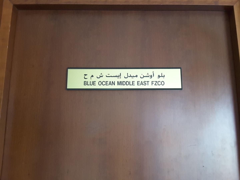 HiDubai-business-blue-ocean-middle-east-fzco-b2b-services-distributors-wholesalers-jebel-ali-industrial-3-dubai-2
