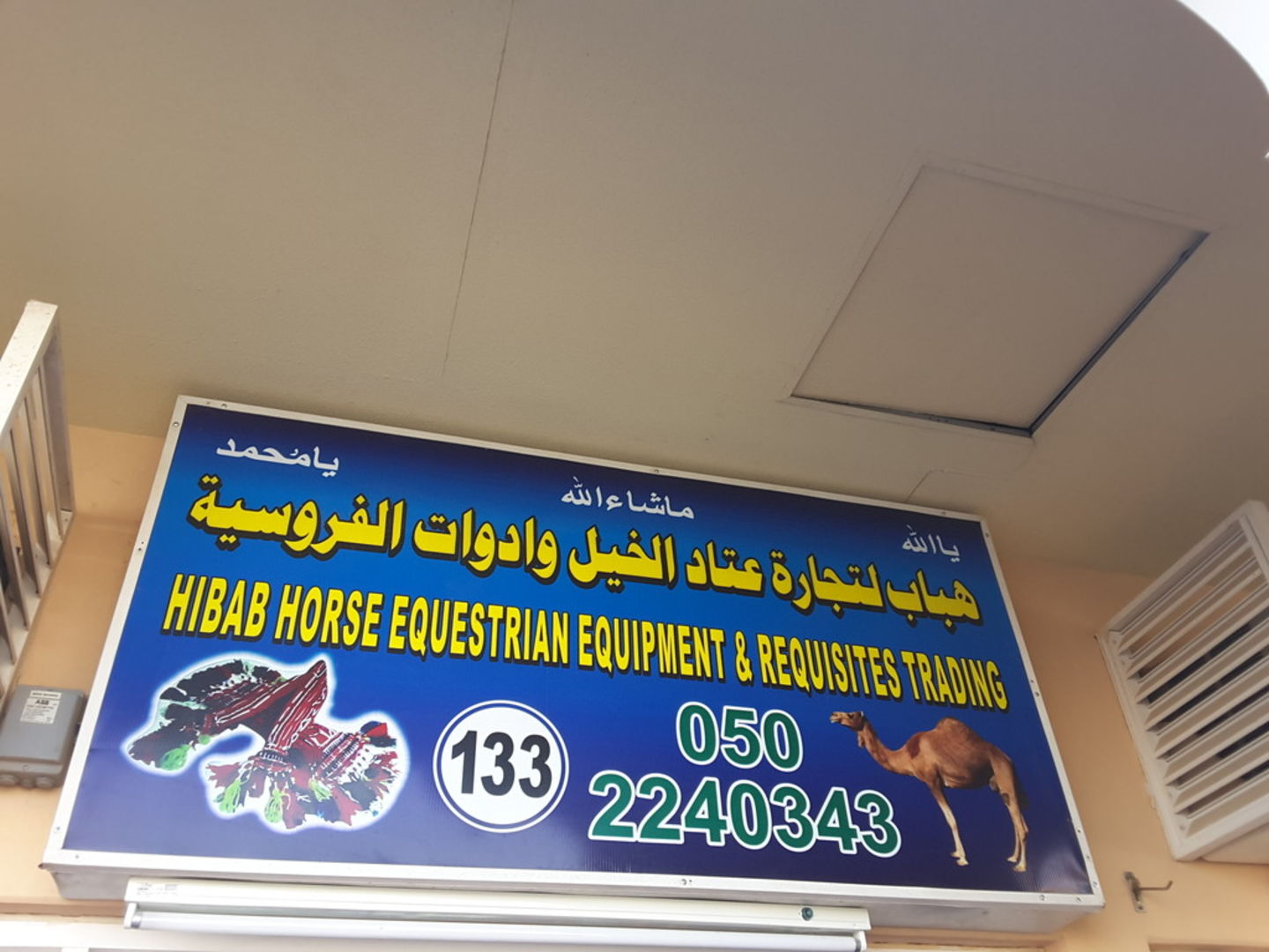 HiDubai-business-hibab-horse-equestrian-equipment-requisites-trading-animals-pets-plants-pet-food-accessories-stores-margham-dubai-2