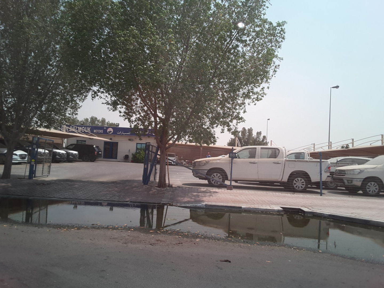 HiDubai-business-bin-dalmouk-motors-transport-vehicle-services-used-car-dealers-ras-al-khor-industrial-3-dubai-2