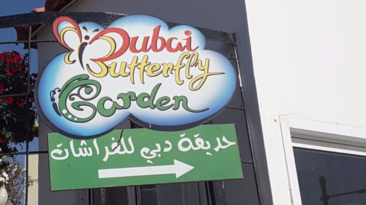 HiDubai-business-dubai-butterfly-garden-leisure-culture-parks-beaches-arjan-al-barsha-south-3-dubai-2