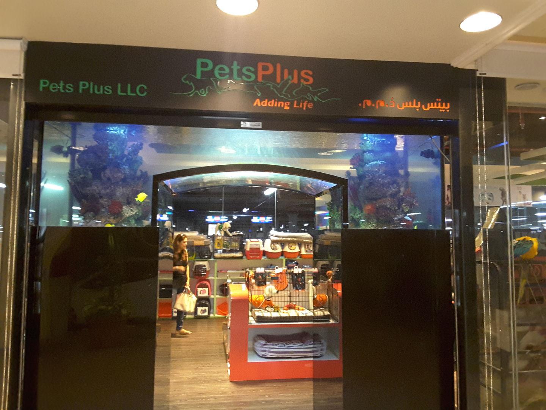 HiDubai-business-pets-plus-animals-pets-plants-pet-food-accessories-stores-jumeirah-1-dubai-2