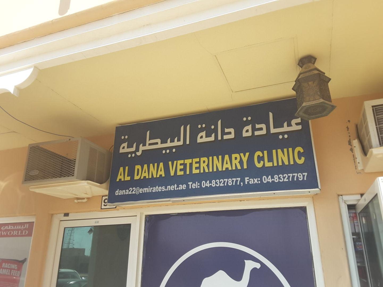 HiDubai-business-al-dana-vetrinary-clinic-animals-pets-plants-pet-clinics-vets-margham-dubai-2