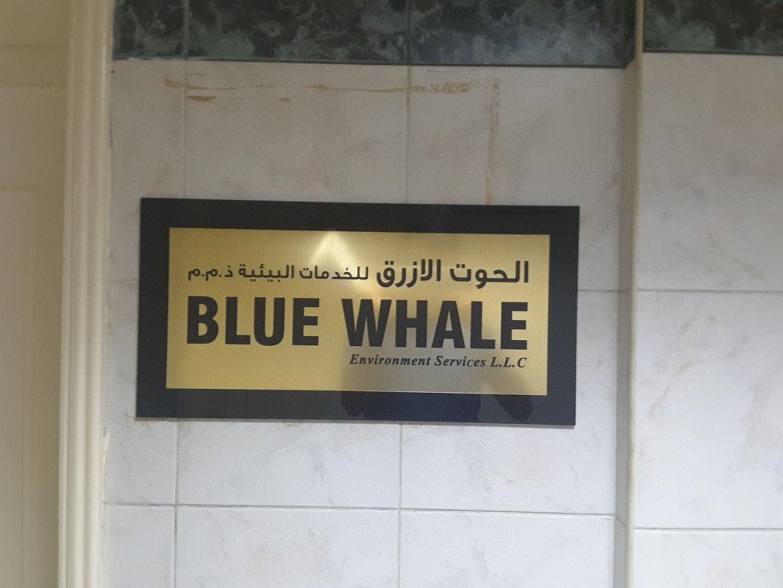 HiDubai-business-blue-whale-environment-services-b2b-services-business-process-outsourcing-services-hor-al-anz-east-dubai