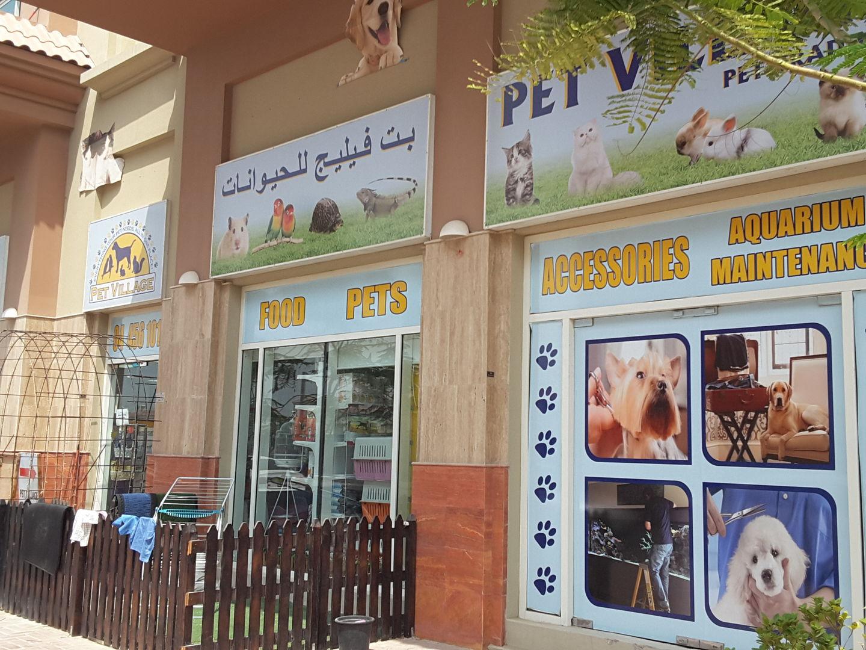 HiDubai-business-pet-village-pets-trading-animals-pets-plants-pet-food-accessories-stores-jumeirah-village-al-barsha-south-5-dubai-2