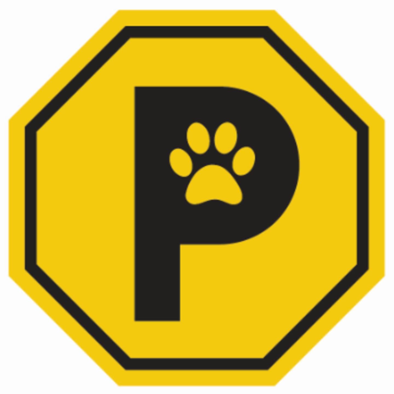 HiDubai-business-paw-parking-animals-pets-plants-pet-hotels-day-care-al-quoz-industrial-4-dubai