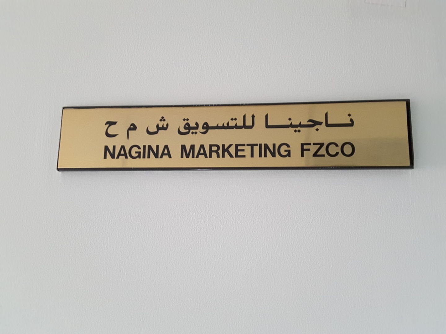 HiDubai-business-nagina-marketing-fzco-b2b-services-distributors-wholesalers-jebel-ali-free-zone-mena-jebel-ali-dubai-2