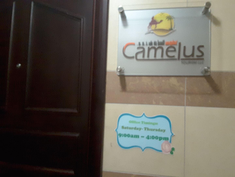 HiDubai-business-camelus-tourism-hotels-tourism-local-tours-activities-hor-al-anz-east-dubai-2