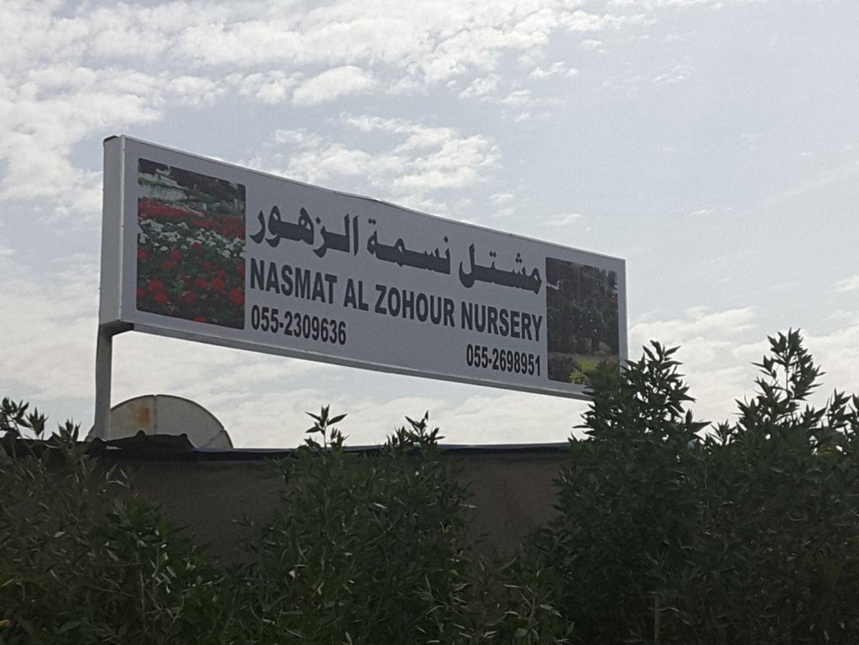 HiDubai-business-nasmat-al-zohour-nursery-home-gardening-landscaping-warsan-3-dubai-2